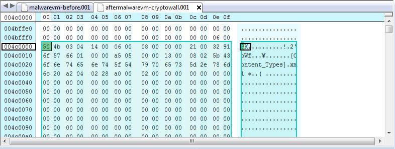 malwarevm-after