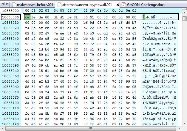 malwarevm-encrypted-file